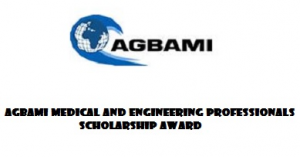 Agbami Medical and Engineering Professionals Scholarship Award / 2017